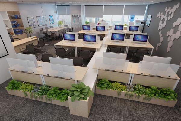 bố cục nội thất hoàn chỉnh cho văn phòng